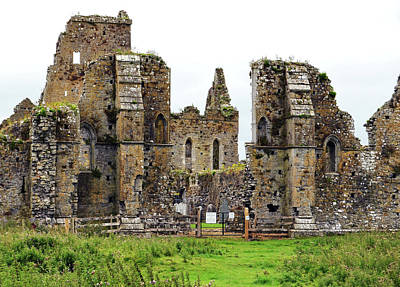 Photograph - Irish Athassel Priory Medieval Gothic Ruins In County Tipperary Ireland by Shawn O'Brien