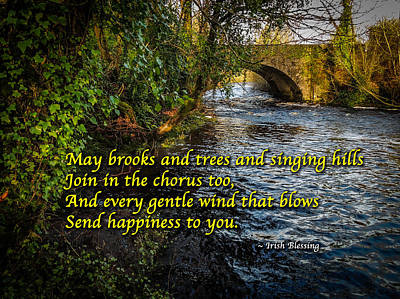 Photograph - Irish Blessing - May The Brooks And Trees... by James Truett
