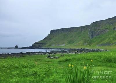 Nirvana - Irish Coastal Scene by Barbie Corbett-Newmin