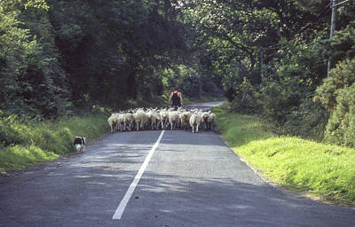 Photograph - Irish Commute by Christopher Rees