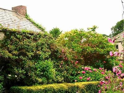 Photograph - Irish Cottage Garden by Stephanie Moore