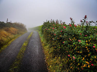 Photograph - Irish County Road In Autumn by James Truett