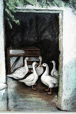 Art Print featuring the painting Irish Ducks by Melinda Saminski
