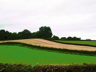 Photograph - Irish Fields by Stephanie Moore