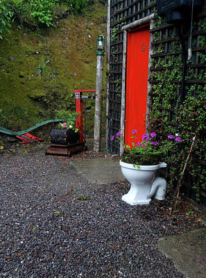 Photograph - Irish Flower Potty by Jacqueline  DiAnne Wasson