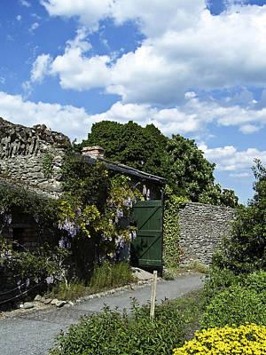 Spot Of Tea - Irish Garden County Clare by Teresa Mucha