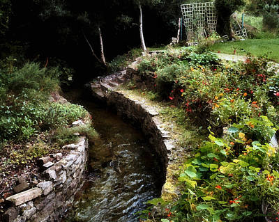 Photograph - Irish Garden Stream by Joe Bonita