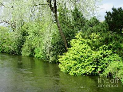 Photograph - Irish River 2 by Crystal Rosene