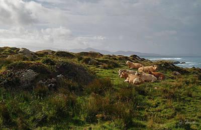 Photograph - Irish Rustic by Joe Bonita