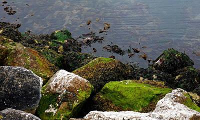 Photograph - Irish Sea Coast by Lexa Harpell