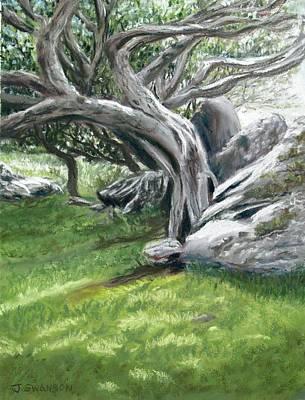 Irish Tree Ring Of Kerry Art Print by Joan Swanson