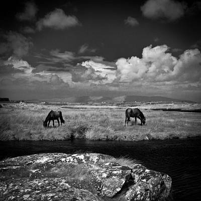 Photograph - Irland 36 by Avril Christophe