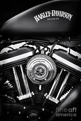 Skull Photograph - Iron 883 by Tim Gainey
