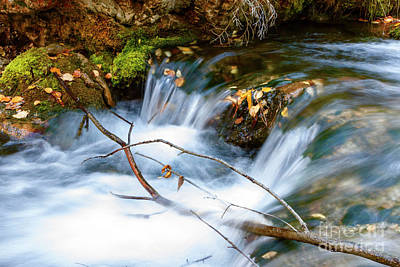 Photograph - Iron Creek Fall Flowing by Steve Triplett