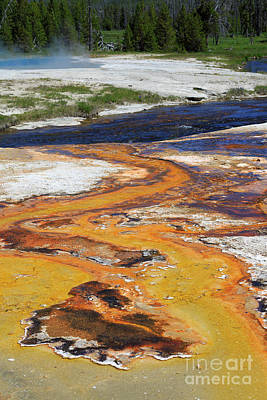 Photograph - Iron Creek In Black Sand Basin Yellowstone National Park by Louise Heusinkveld