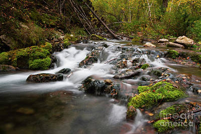 Photograph - Iron Creek Rapids  by Steve Triplett