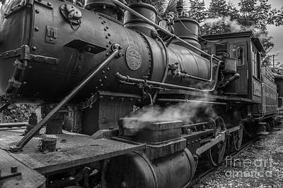 Photograph - Iron Horse by Dale Powell