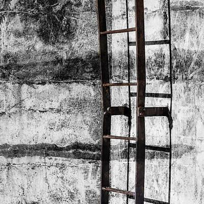 Mixed Media - Iron Ladder by Carol Leigh