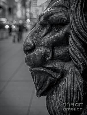Photograph - Iron Lion by James Aiken