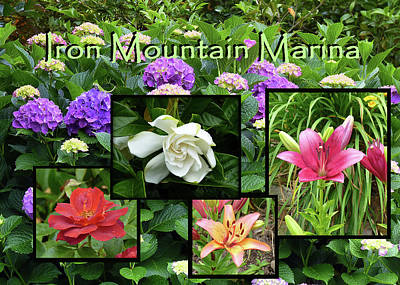 Photograph - Iron Mountain Marina Flowers by Carla Parris