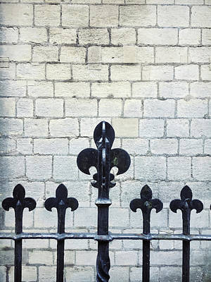 Victorian Era Wall Art - Photograph - Iron Railings Detail  by Tom Gowanlock