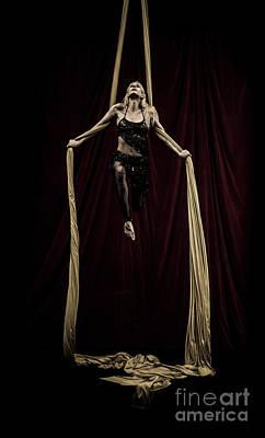 Photograph - Iron Silks by Scott Sawyer