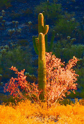 Photograph - Ironwood Saguaro Dance - Bold by Judy Kennedy