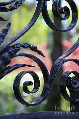 Photograph - Ironwork Against Pastel by Heather Green