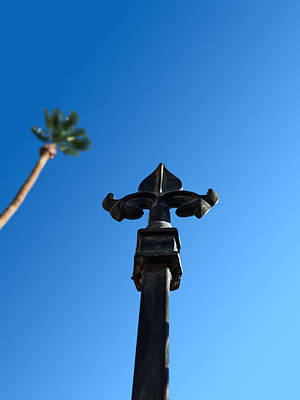 Photograph - Ironwork Fleur-de-lis With Date Palm by Stan  Magnan