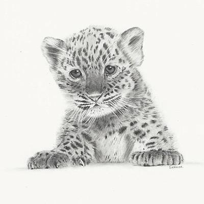 Cheetah Drawing - Irresistable by Sandra Weiner