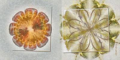 Tenn Painting - Irresolvable Layout Flower  Id 16165-030803-46101 by S Lurk
