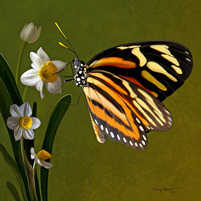 Isabella Tiger Butterfly Art Print