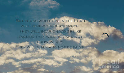 Womens Empowerment - Isaiah 40 31 by Andrea Anderegg