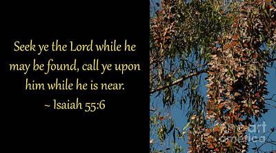 Photograph - Isaiah 55-6 3 by Glenn Franco Simmons