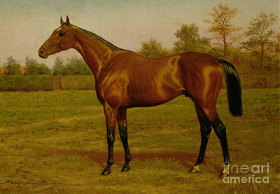 Portraits Painting - Isinglass, Triple Crown, 1893 by Harrington Bird