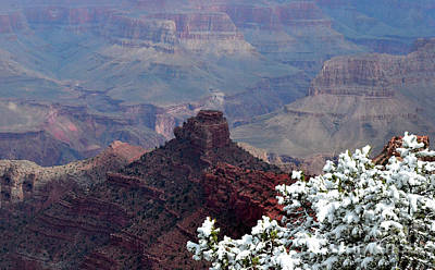 Kim Fearheiley Photography - Grand Canyon ONeill Butte by Debby Pueschel