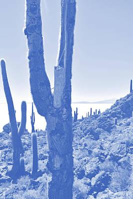 Photograph - Isla Incahuasi, Salar De Uyuni, Bolivia No. 148-1 by Sandy Taylor