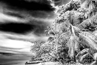 Photograph - Isla Zapatillas Monochrome by John Rizzuto