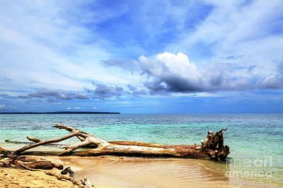 Photograph - Isla Zapatillas Panama by John Rizzuto