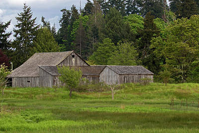Photograph - Island Barn by Inge Riis McDonald