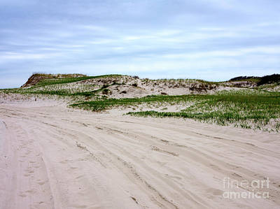 Photograph - Island Beach Dunes by John Rizzuto