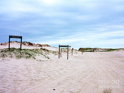 Photograph - Island Beach State Park by John Rizzuto