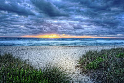 Photograph - Island Dune Trails by Debra and Dave Vanderlaan