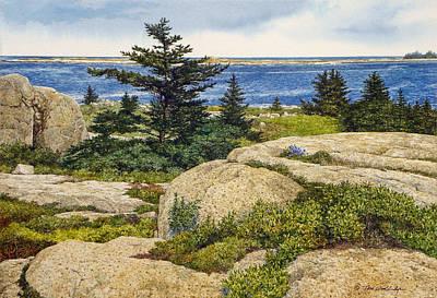 Island Harebells Art Print by Tom Wooldridge