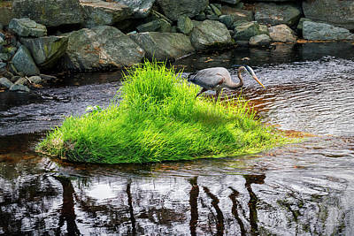 Photograph - Island In The Stream by Brian Wallace