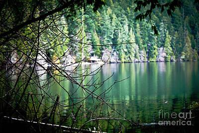 Photograph - Island Lake Vignette by Donna Munro