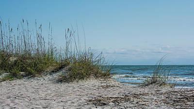 Photograph - Island Life by Ed Waldrop