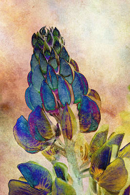 Photograph - Island Lupin 2 by WB Johnston