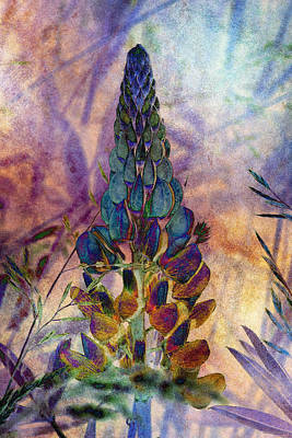 Photograph - Island Lupin 6 by WB Johnston