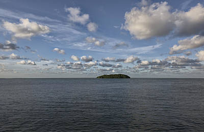 Coastline Photograph - Island Mangrove  by Jon Glaser